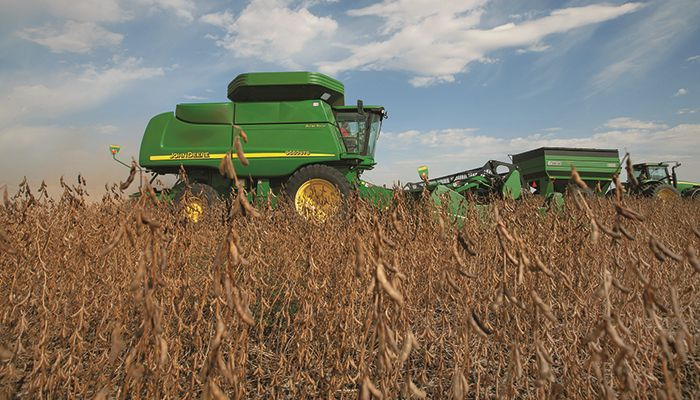 Early soybean yield reports come in above expectations