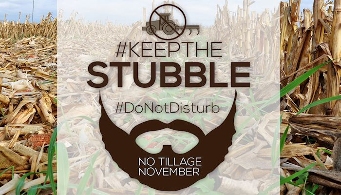 """No tillage November"" campaign urges farmers to leave the stubble"