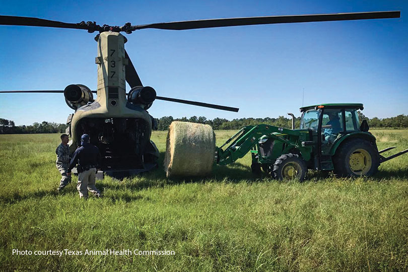 Operation Hay Drop feeds livestock during disaster